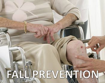 Elderly Fall Prevention Program